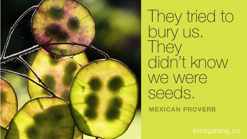 They tried to bury us. They didn't know we were seeds. - Mexican Proverb